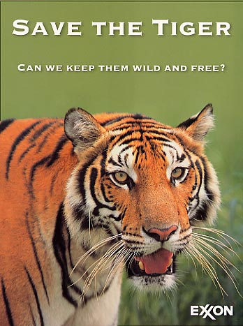 """Save The Striped Heavenly Creature """" The TIGER"""" 